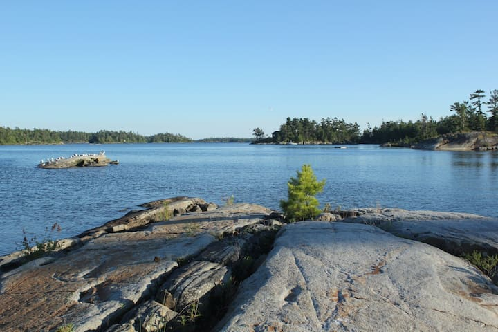 Classic cottage experience on private island - Parry Sound