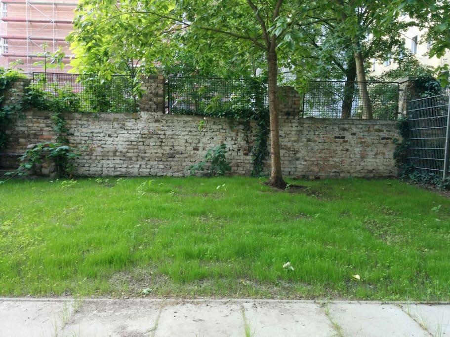 50 m^2 private garden (It's even greener today) :)