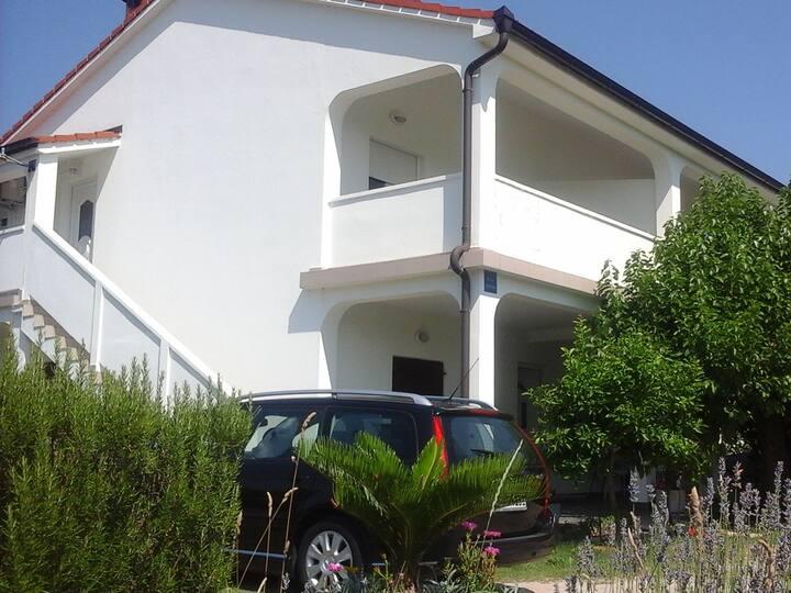Apartment Sneki