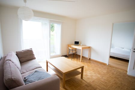 Bright and quiet apartment - Zürich