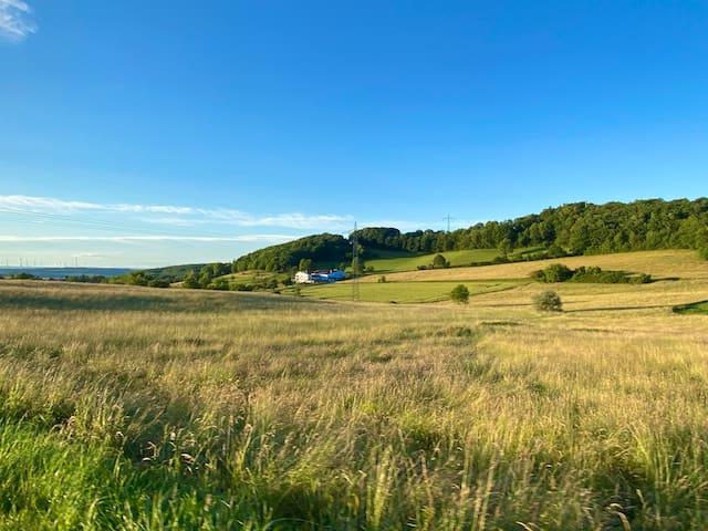 Ruhiger Aussiedlerhof im Nordpfälzer Bergland
