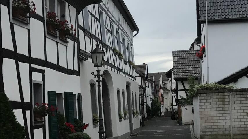 Rhein, 7-Gebirge, Bonn, Köln, Ruheoase, Welcome!!🚭