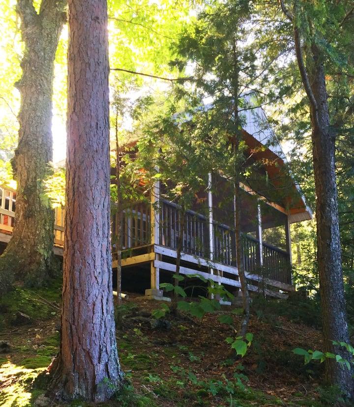 Pine Cabin: Vintage Cottage, Crystal Clear Lake