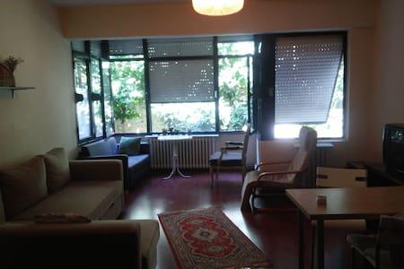 A place just in the heart of beşiktaş. - Beşiktaş - Daire