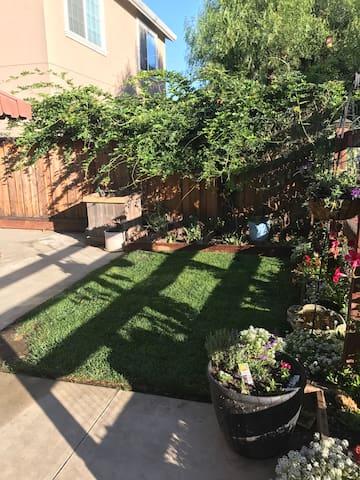 Private yard