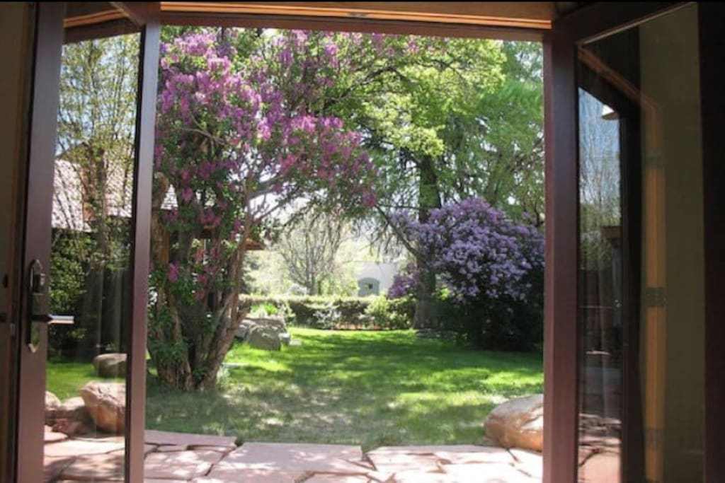 French doors to the large yard and patio.  There are 3 sets of French doors in our guesthouse, all 3 open to the yard and patio and allow for beautiful views and natural light.