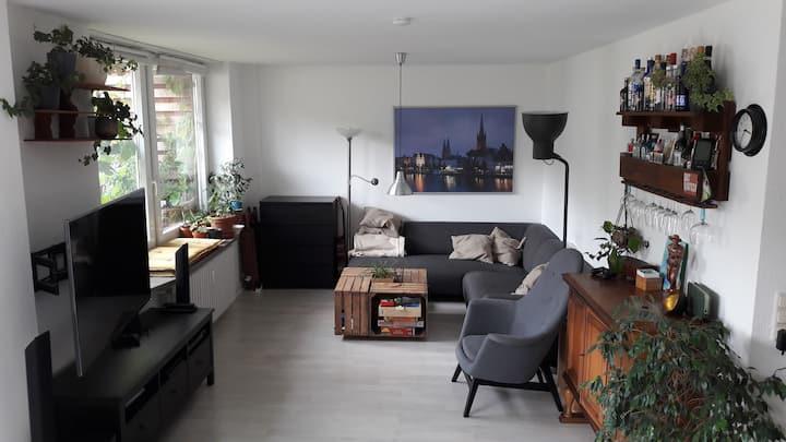 Helle große Wohnung mit Dachterrasse in Altstadt