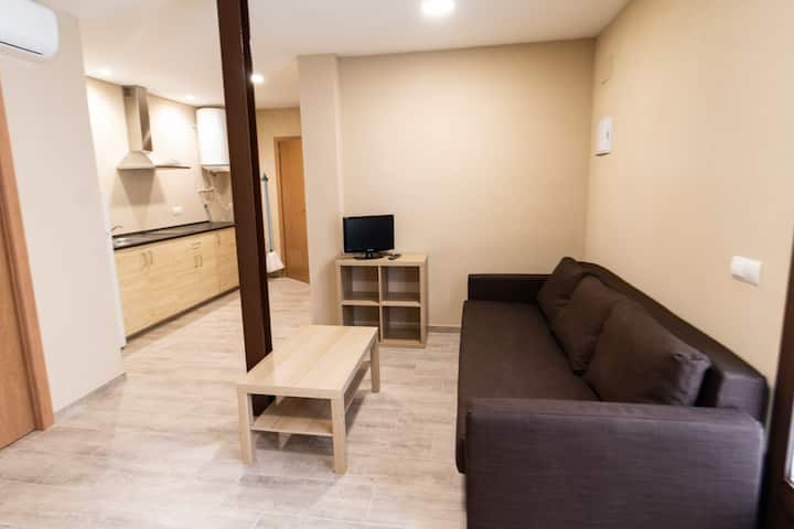 "Casa Cal Metge (apartamento ""Presseguer"")"