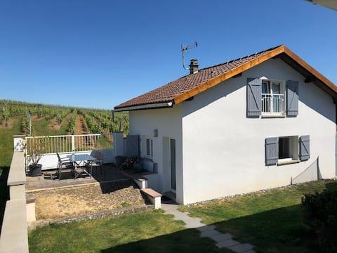 Petite maison avec terrasse + jardin à 5min Colmar