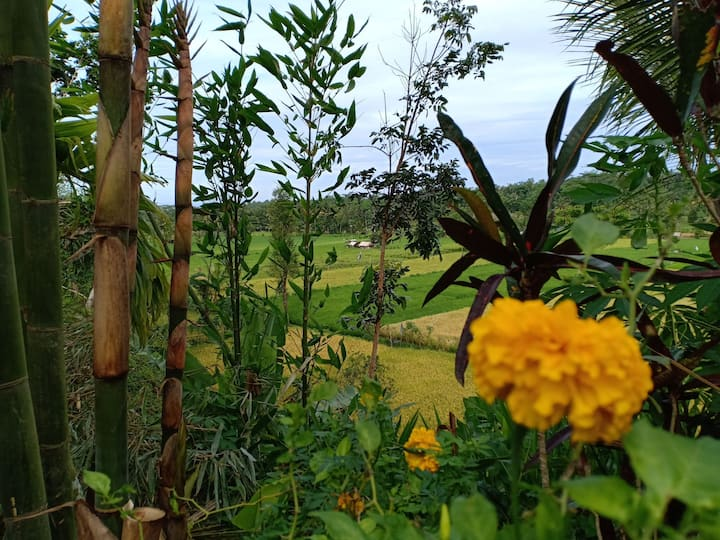 Rural Farmstay In Central Lombok by BC Foundation