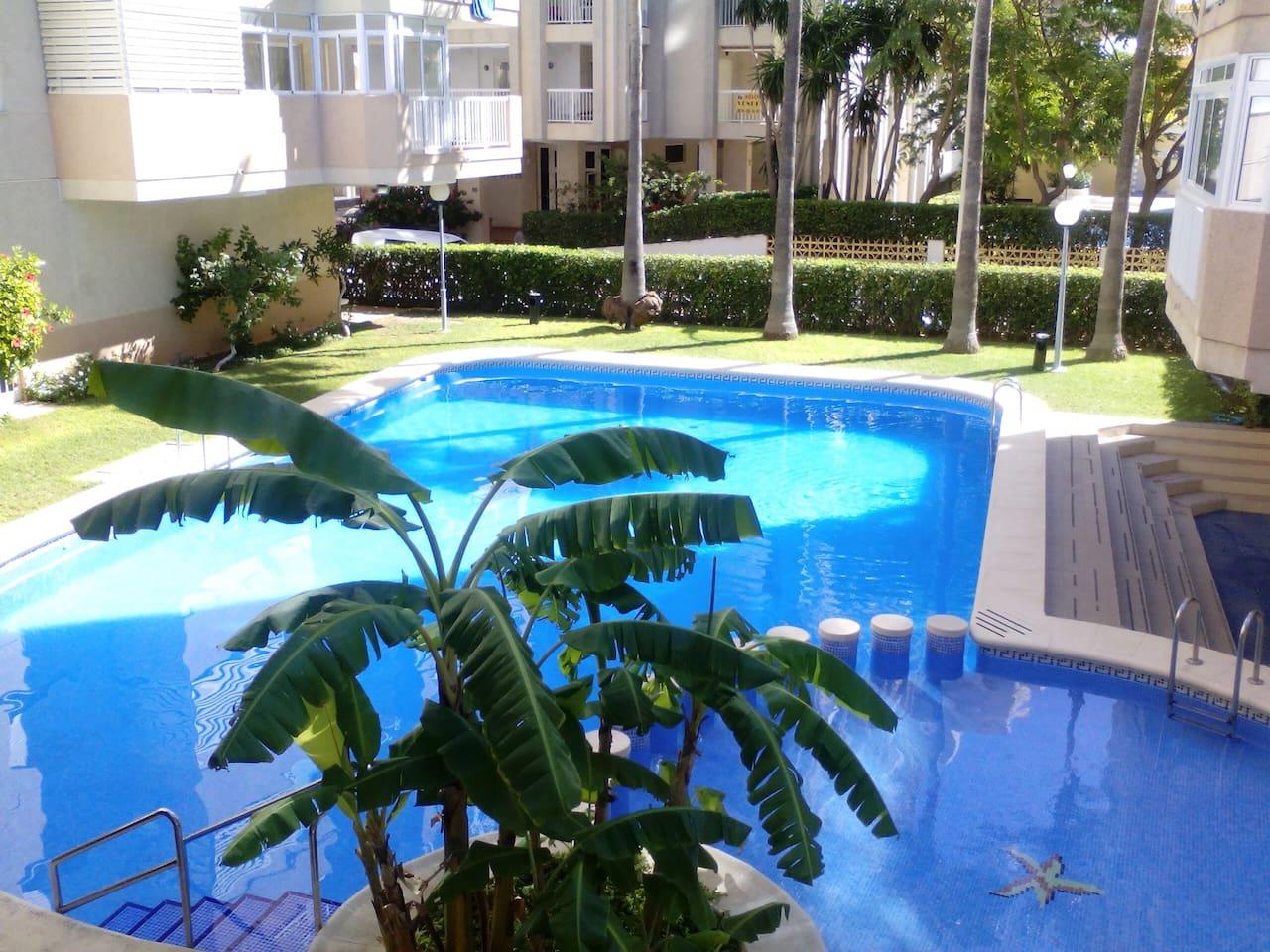 La piscina es perfecta para refrescarte en verano, dispone de piscina para los niños y duchas, muy útil cuando vuelves de la playa.