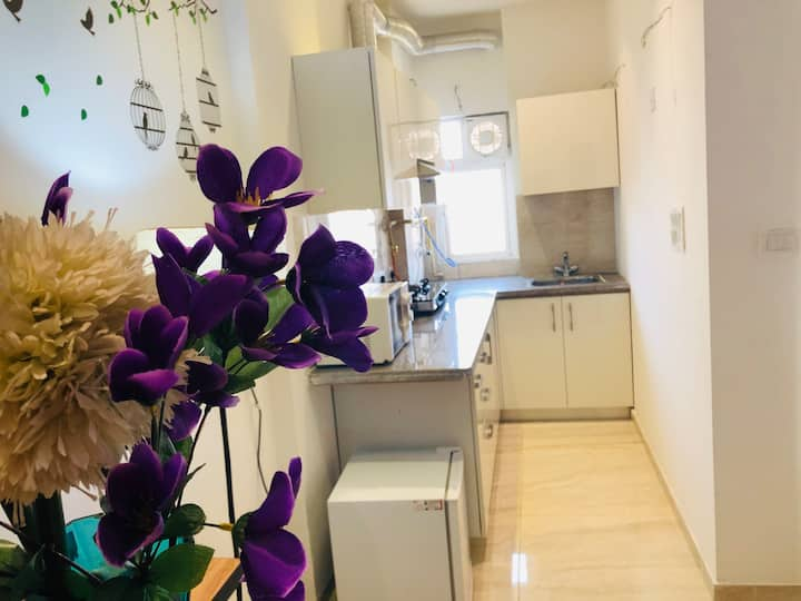 Violet Roses & Casa Blanca,for Monsieur & Senorita