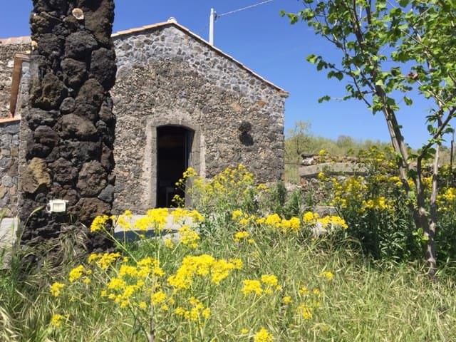 un loft alle falde dell'Etna e vista sul mare - Mascali - House
