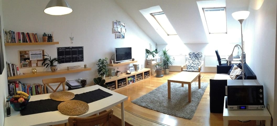 Cozy attic apartment in city center - Brno