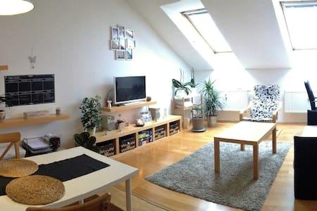 Cozy attic apartment in city center - Brno
