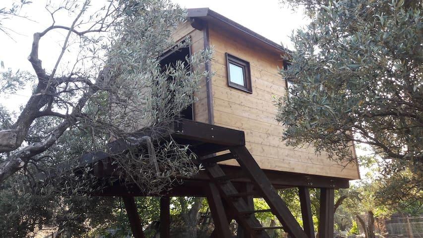 PALAZZO CONFORTI TREEHOUSE RESORT noce
