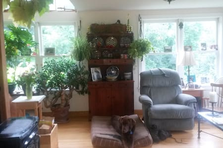 Paradise Green Mountain Getaway - Starksboro