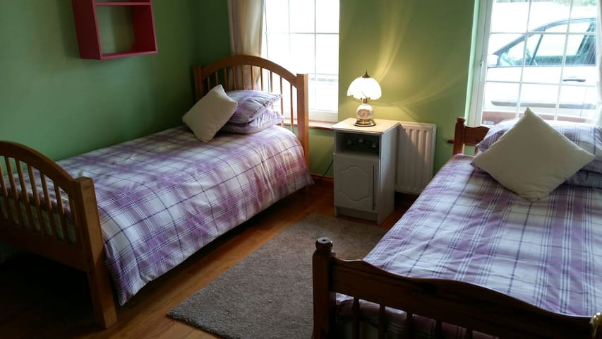 Two Comfortable single beds. - Abbeyfeale - Casa