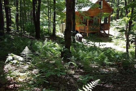 Getaway Cabin, restful yet great nearby activities