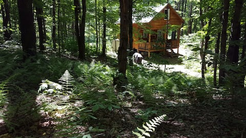 Getaway cabin- wooded, restful, nearby activities.