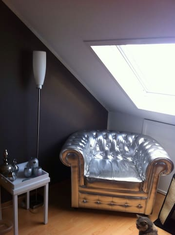 Spacious  room with kitchen - Almere - Casa
