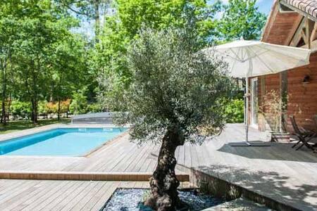 Villa Bois avec piscine sur terrain 2500 m2 - Saubusse - 별장/타운하우스