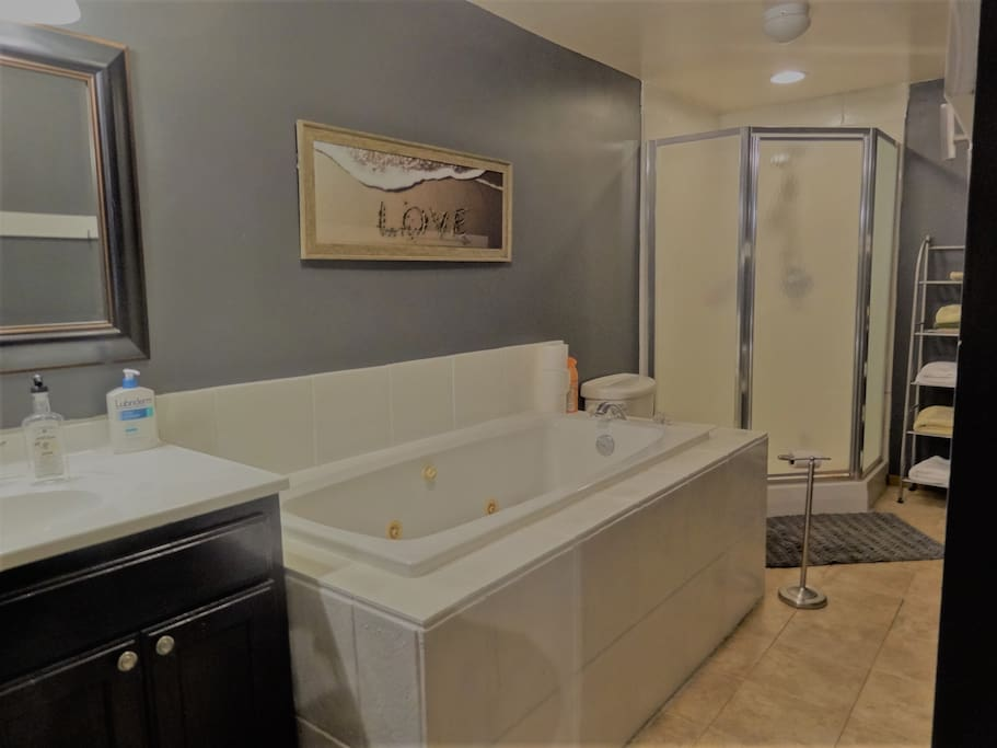 Large bath with separate tub and shower