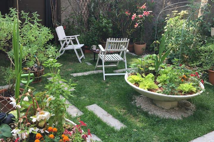 Noiseau : Chambre dans Maison vintage avec Jardin