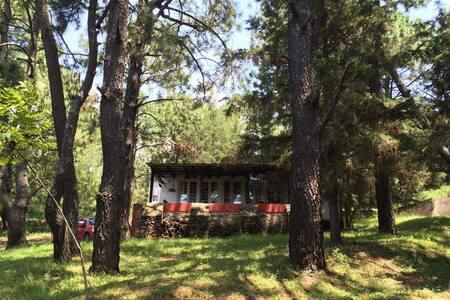 Cabaña Los Lomelines Tapalpa Jal - Tapalpa - Alojamento na natureza