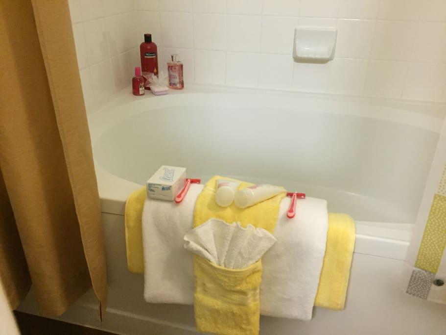 Bathroom Amenities, shampoos, conditioner shower gel, blow dryer provided