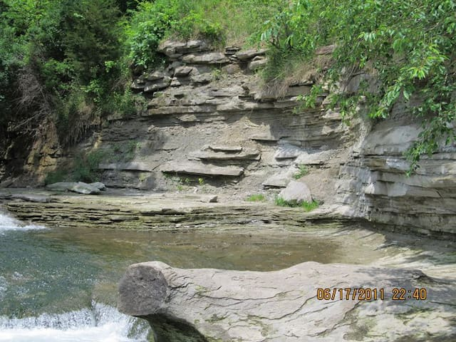 """Spring Lake Nature Park- a """"Must See"""" in Streator! Just a few  minutes drive away"""