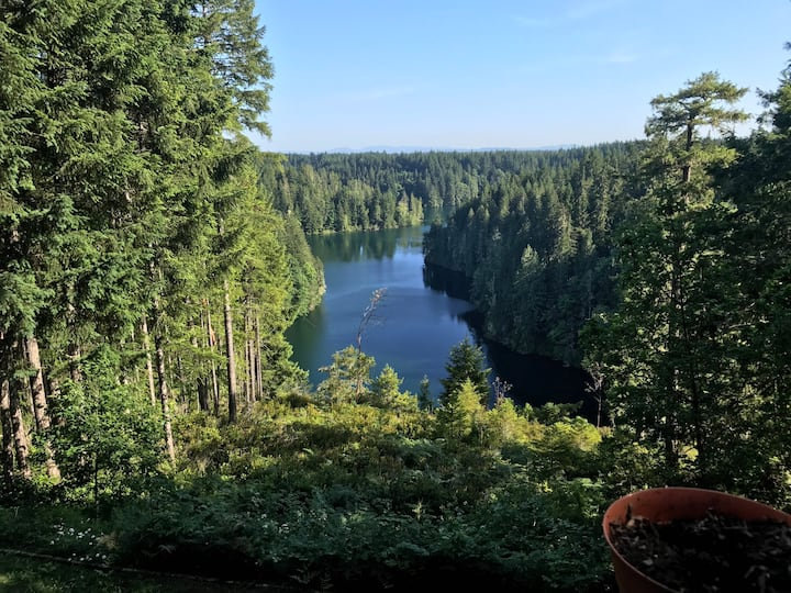 Quiet lake retreat in the Olympic Mts-Lake Cushman