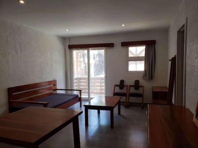 高档小区一室一厅scandi apartment unit4