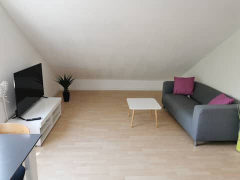 Entire apartment  with air conditioning