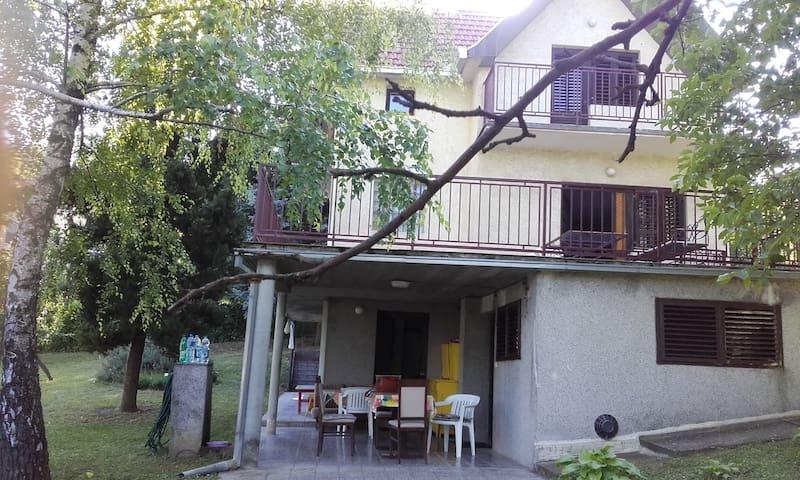 House for Exit Festival - Sremska Kamenica - Holiday home