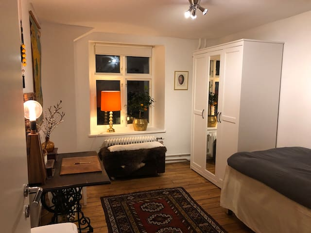 Room in cosy apartment in the heart of Gothenburg