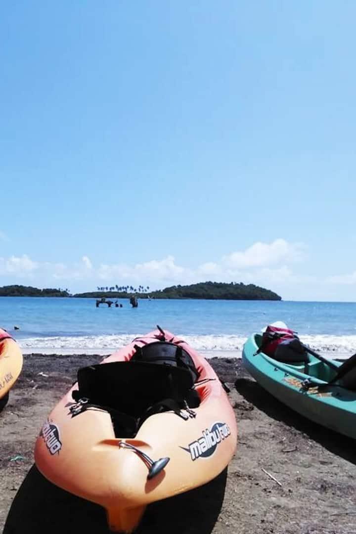 We begin our ecotour KayakMonkeyIsland!