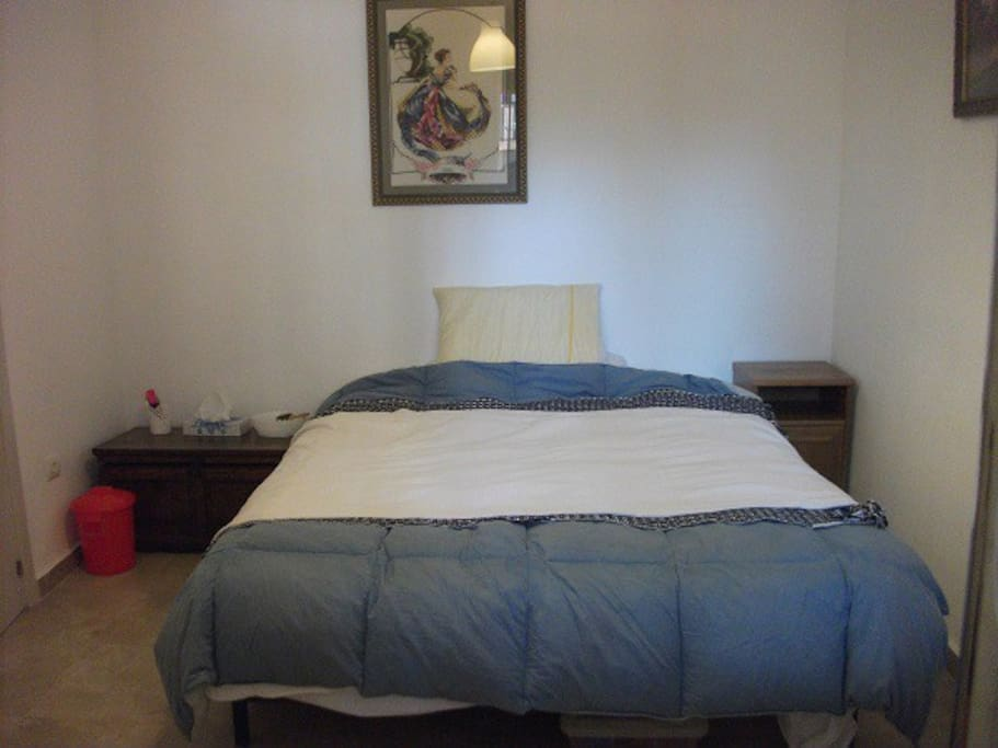 Comfortable body foam mattress bed in ground floor bedroom with walk in shower, WC, washbasin