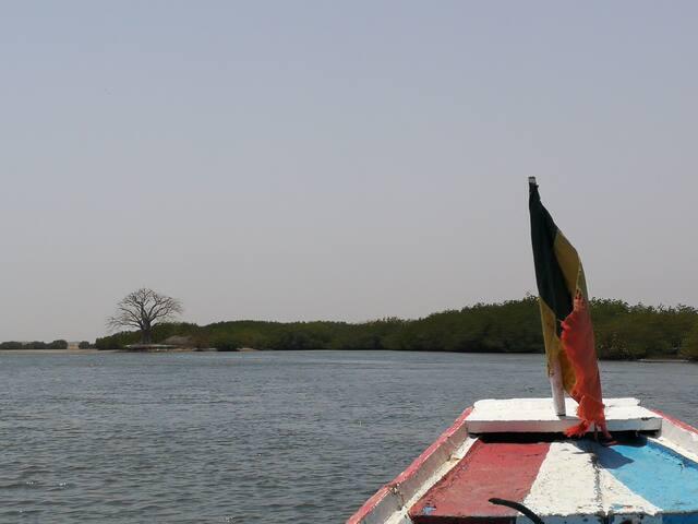 Les symboles du Sénégal sur le Saloum