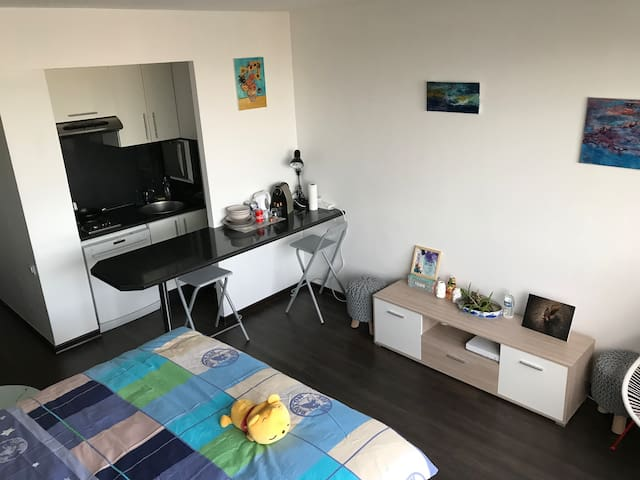 Lovely and Cozy Studio in La Défense (View Paris)