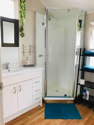 New bathroom shower head  installed June 2019