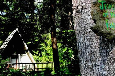 Celebrationartist  A Frame Jewel of the Forest