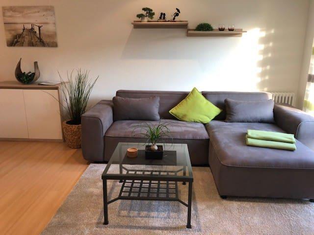 Ferienwohnung Kohler, (Bühlertal), Fewo Kohler, 45qm, 1 Wohn-/Schlafzimmer, max. 2 Personen