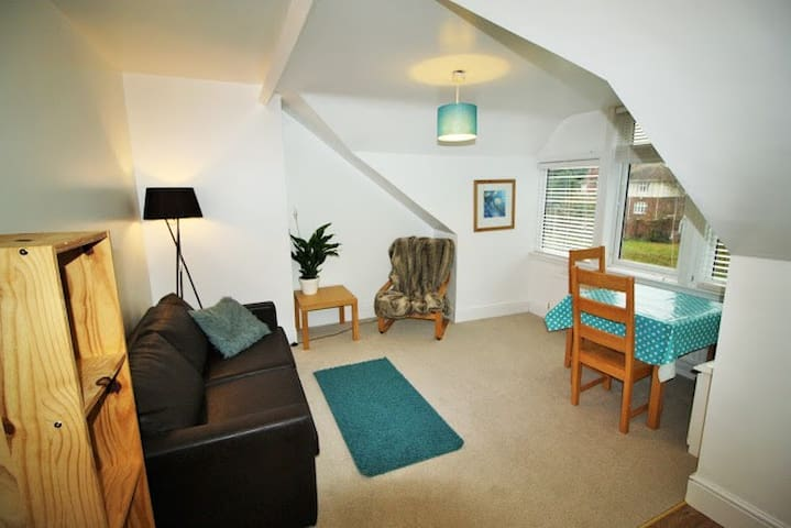 City centre, lovely top floor 1 bed flat - Exeter - Apartment