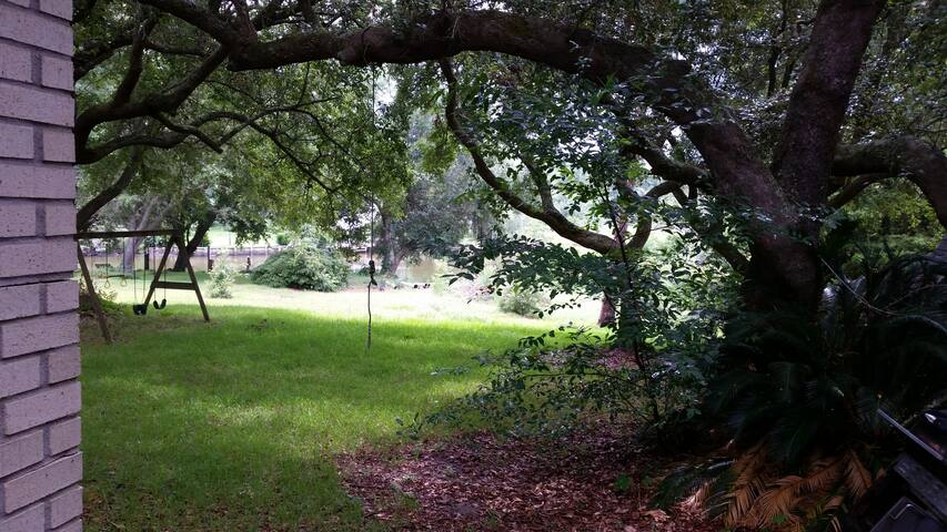 8 majestic Live Oaks on this property