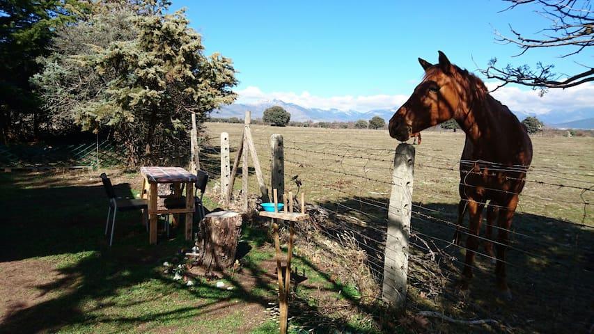 Disfruta de La Caravalú en la Sierra de Madrid