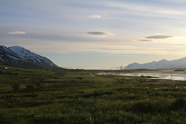 Hiking/birdwatching paradise near Dalvík.