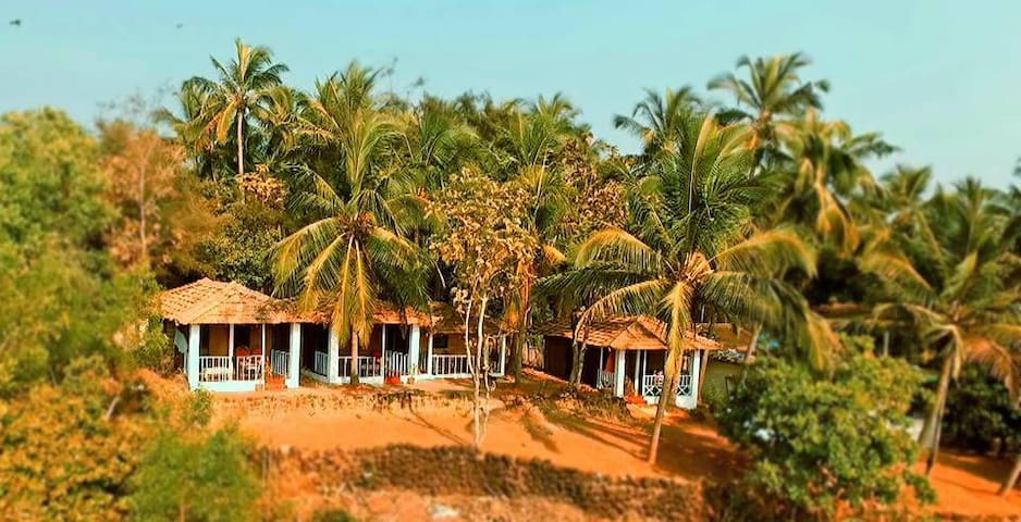 Agonda dream view
