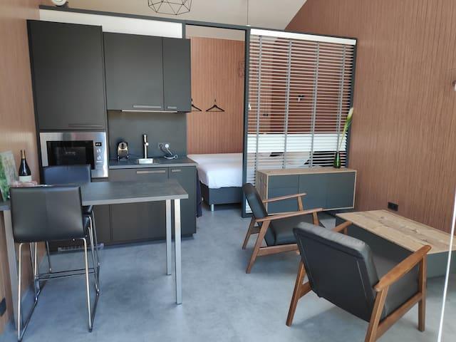 Luxe studio met IR sauna (studio 1)