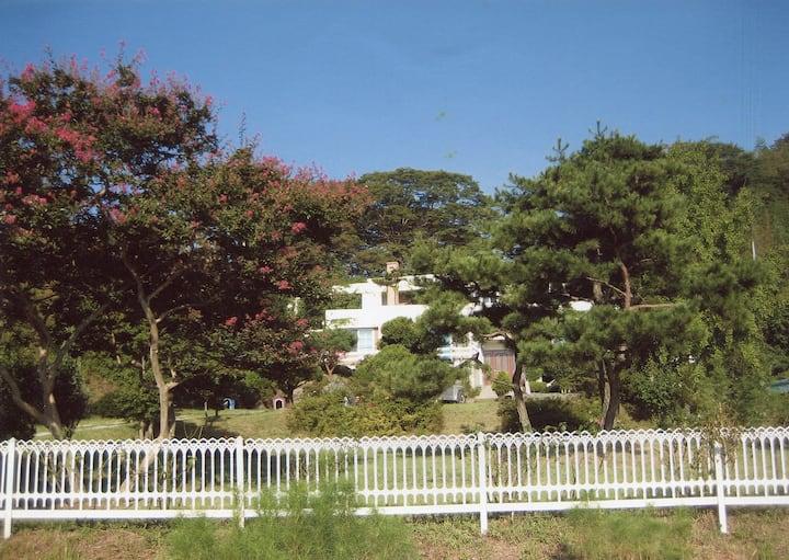 Hampyeong에서 앞뜰의 소나무가 아 름다운 전원 주택